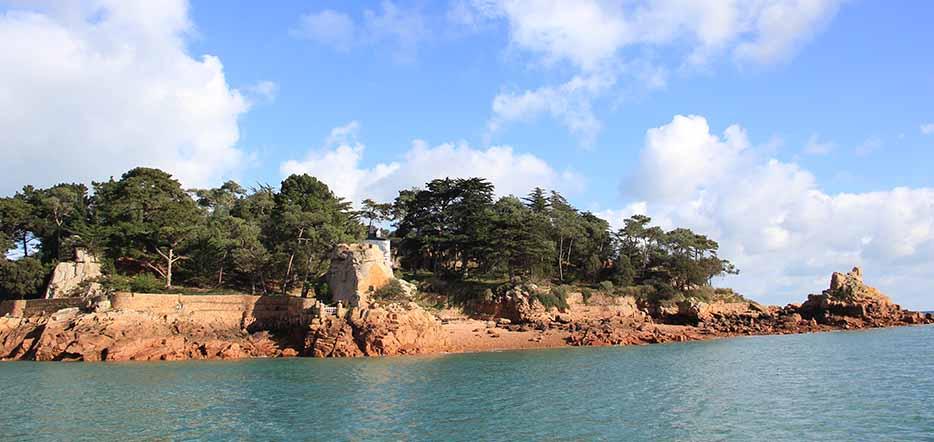 Bréhat, l'île aux fleurs des Côtes d'Armor #3