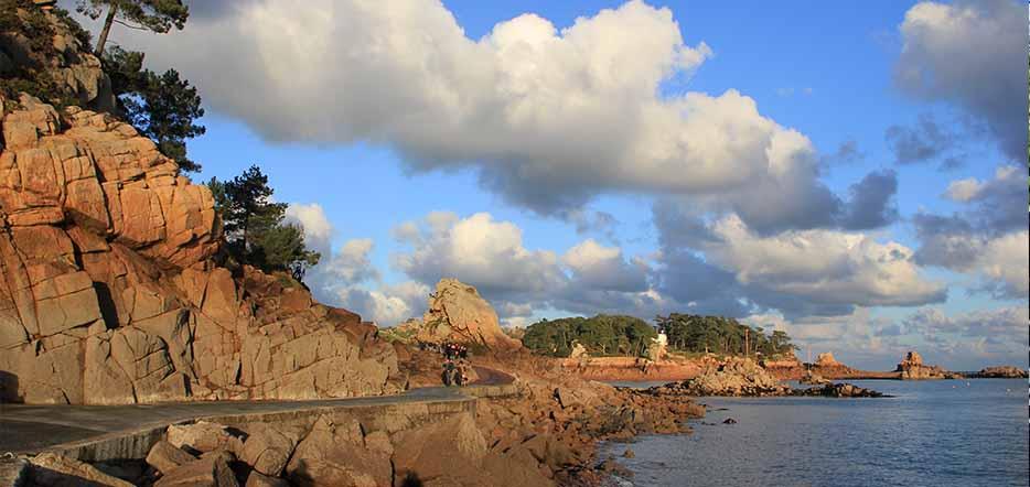 Bréhat, l'île aux fleurs des Côtes d'Armor #4