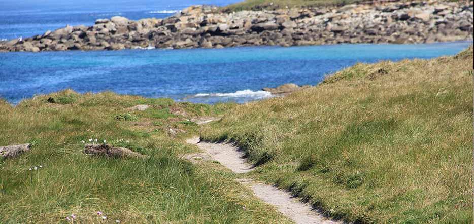 Bulle de douceur jusqu'à l'Île de Batz #2