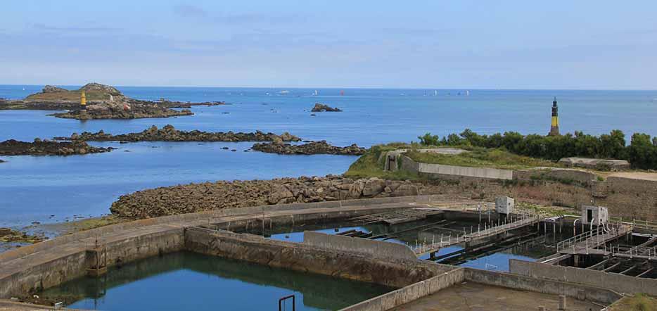 Bretagne du Nord : Roscoff dans le Finistère #4