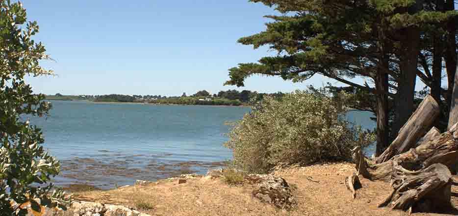 Escapade et découvertes dans le Golfe du Morbihan #5