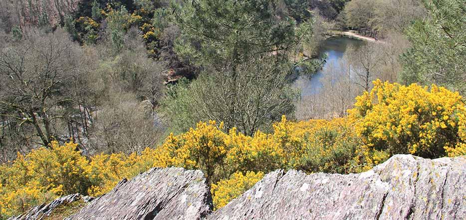 Légendes de Bretagne : sur les traces du Roi Arthur #5