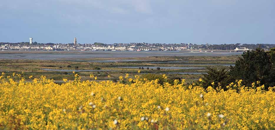 Loire Océan : découverte de Guérande #1