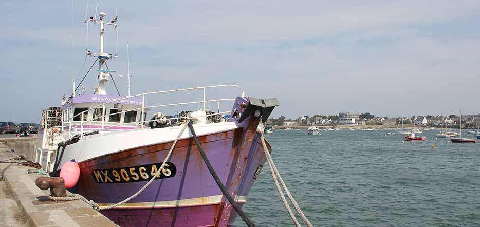 Randonnée plaisir en Finistère #3
