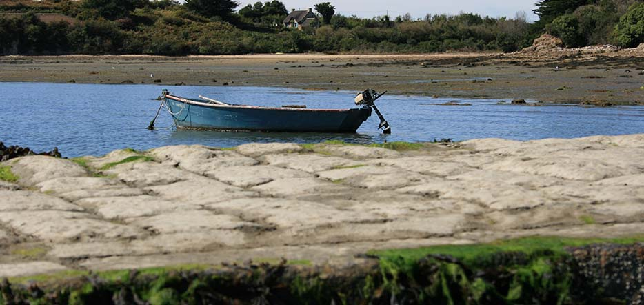 100% nature et Bretagne verte #5