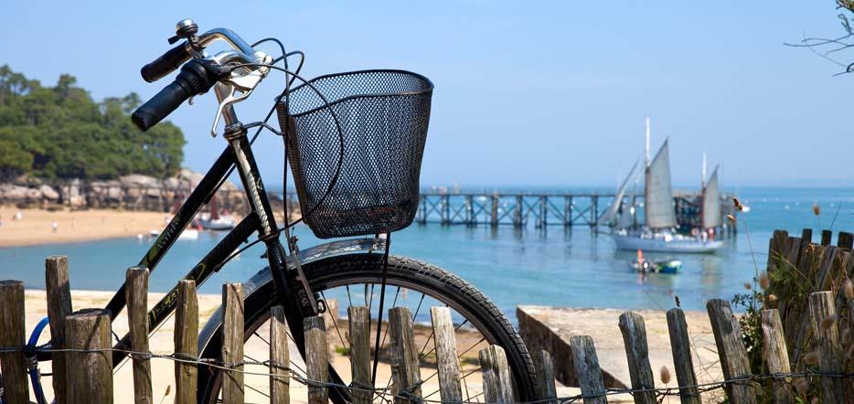 Île au choix pour une location de vélo