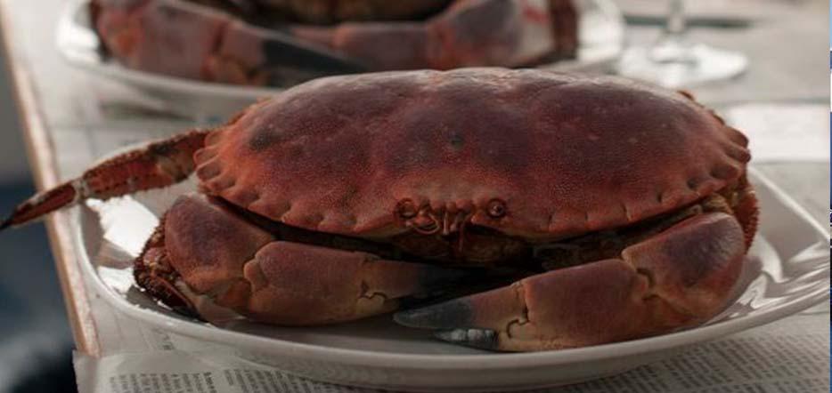 """Déjeuner croisière en rade de Brest façon """"crabe-Marteau"""""""