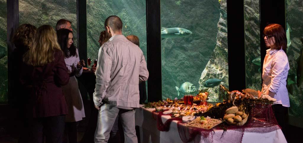 Votre soirée d'entreprise à Océanopolis #2