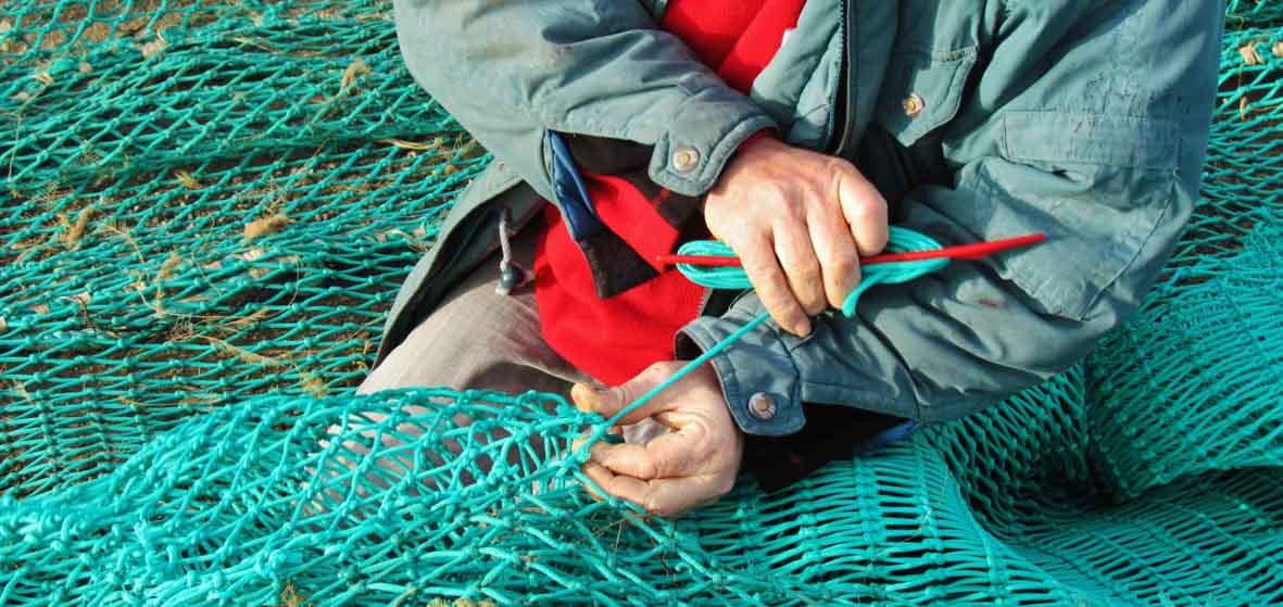 Découvertes iodées en Finistère Sud #3