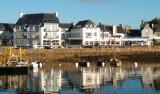 Découvertes iodées en Finistère Sud #1
