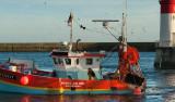 Découvertes iodées en Finistère Sud #5
